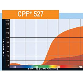 CPF_527_1