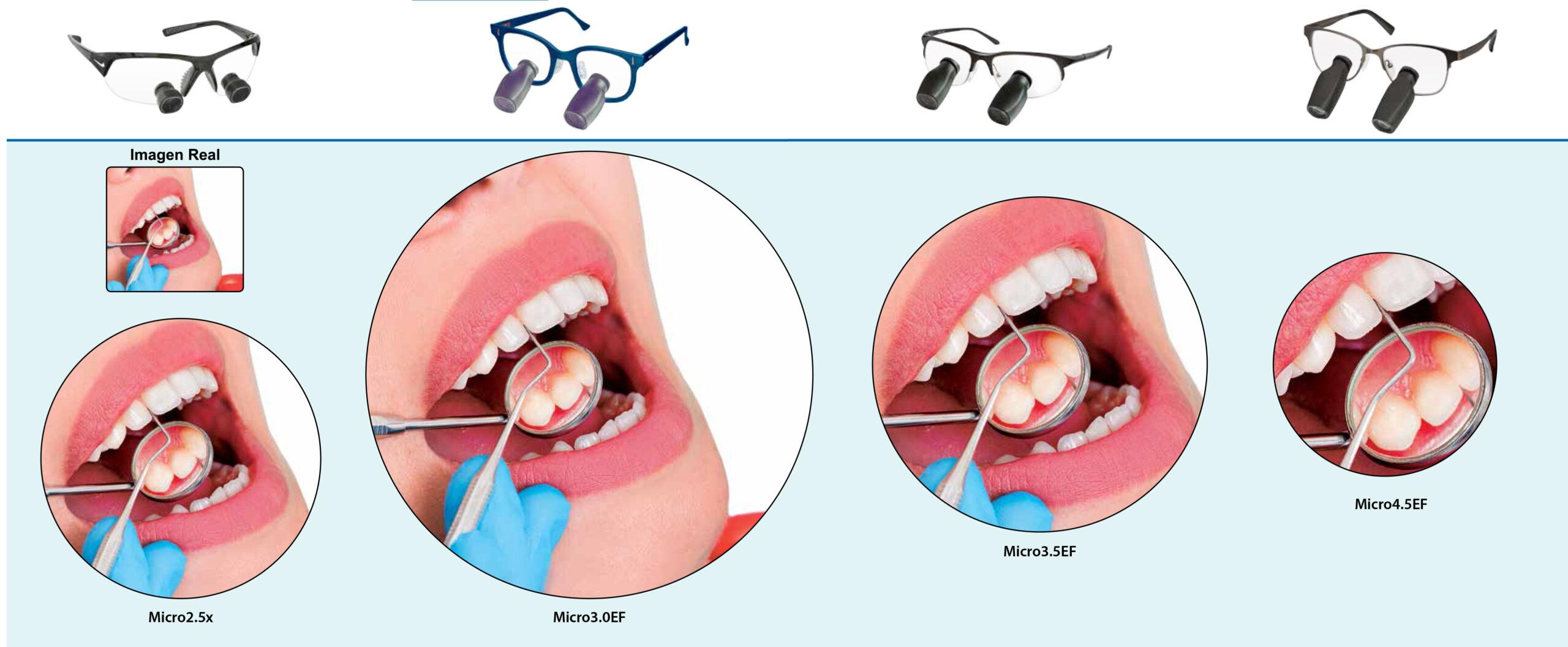 Odontologia_SerieMicro_DFV_AVS
